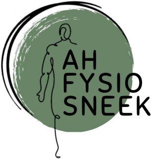 Logo AHFysiosneek cropped